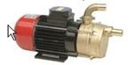 Afbeelding van Zelfaanzuigende elektrische pomp Serie ECC